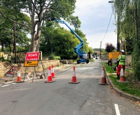 Road closure for tree removal