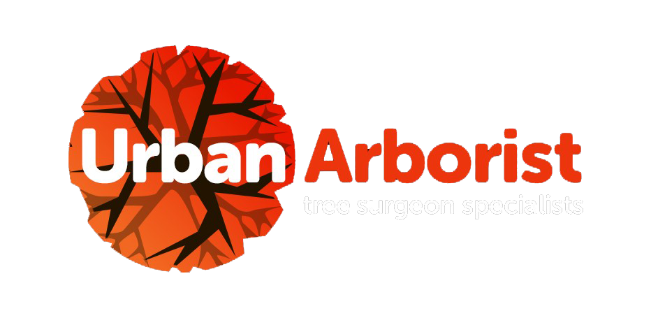 Urban Arborist - Tree Surgeons.